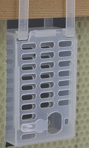 per un efficace blocco totale di covata  la gabbietta Mozzato consente il confinamento dell'ape regina ma il passaggio delle api operaie...